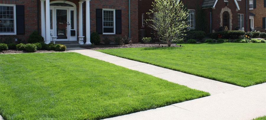 Quality Lawn Care Service Greenline Landscape Management